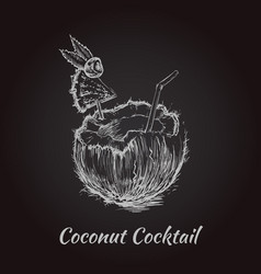 coconut cocktail drink hand drawn vector image