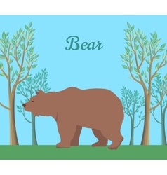 Funny Brown Bear vector
