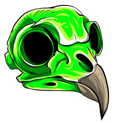 green color bird skull head vector image
