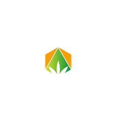 green leaf canabis logo vector image