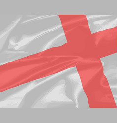 silk flag of saint david vector image