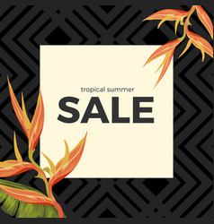 Tropical summer sale with heliconia sunset orange vector