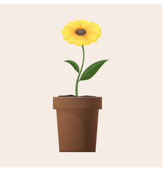 Yellow flower in clay pot isolated vector