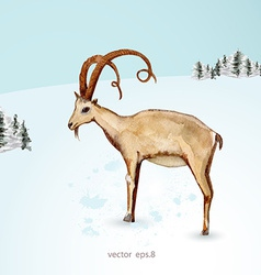 watercolor painting of goat in winter landscape vector image