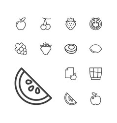 13 fruit icons vector