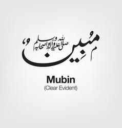 Mubin vector