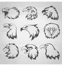 Hawk falcon or eagle head mascot set isolated on vector image vector image