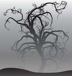 Scary tree in fog vector image vector image