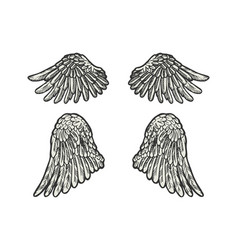 bird angel wings set sketch engraving vector image