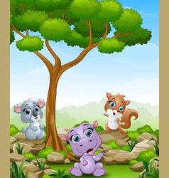 Cartoon hippo with koala and squirrel in the jungl vector
