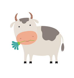 cute cartoon cow with a flower vector image