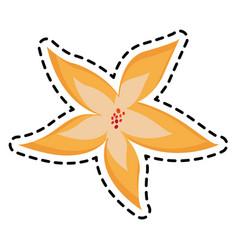 Flower icon image vector