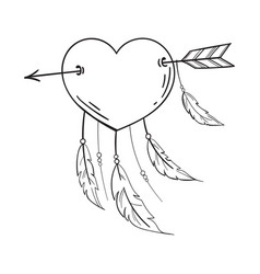 Heart with feathers pierced with an arrow vector