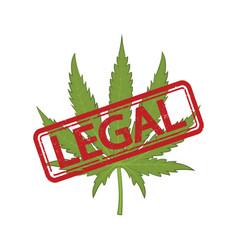 Marijuana legal on white vector
