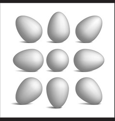 Set realistic white eggs vector