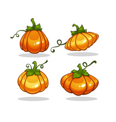 shiny cartoon pumpkin collection for your vector image