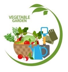Vegetable garden vector image