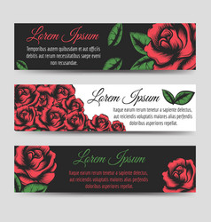 red rose flowers horizontal banners template vector image vector image