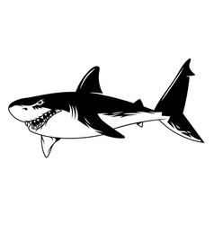 Dangerous angry shark print graphic vector