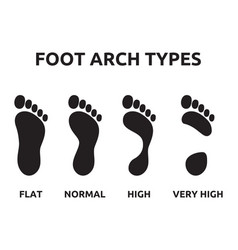 Foot arch types vector