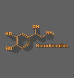 formula hormone noradrenaline vector image