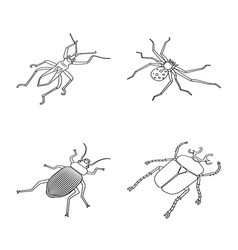 Isolated object fauna and entomology symbol vector