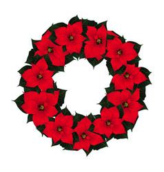 red poinsettia wreath vector image