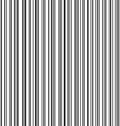 speed lines5 vector image vector image