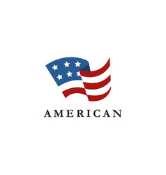 abstract simple united states america flag vector image