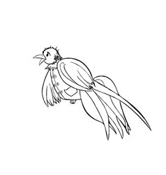 bird dressed in a vest black and white graphics vector image