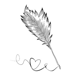 Doodle feather birds vector image