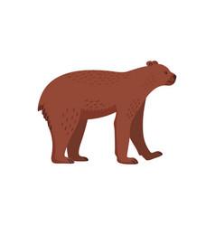 Extinct animals short-faced bear prehistoric vector