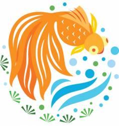 Gold fish swimming vector