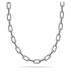 Metal Chain Jewelry vector image