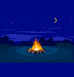 Night campfire on glade vector