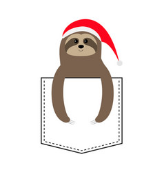 Sloth sitting in pocket red santa claus hat vector