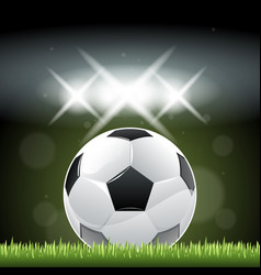 soccer ball on grass in night time vector image