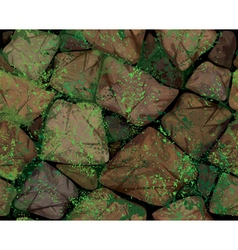 stone moss vector image