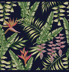 tropical jungle seamless pattern black background vector image