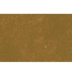 Brown Burlap Texture vector image vector image