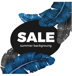 sale summer background text written on black vector image vector image