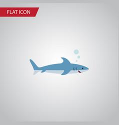 isolated gray fish flat icon shark element vector image