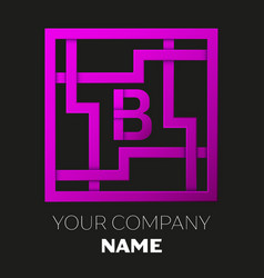 letter b symbol in colorful square maze vector image
