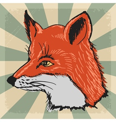 vintage background with fox vector image