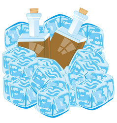 Bottles with drink cover bit ice on white vector