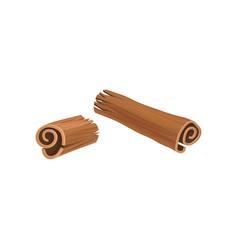 Broken stick of cinnamon aromatic spice used in vector