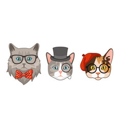 cat heads with accessories cute funny cats vector image