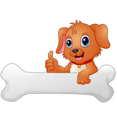 cute dog with holding bone vector image