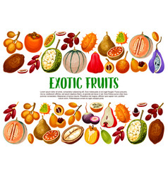 exotic fruits and berries tropical food vector image