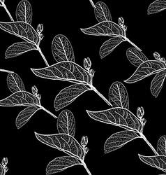 Leaves contours on black background floral vector